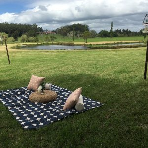 Picnic Rug Set-up