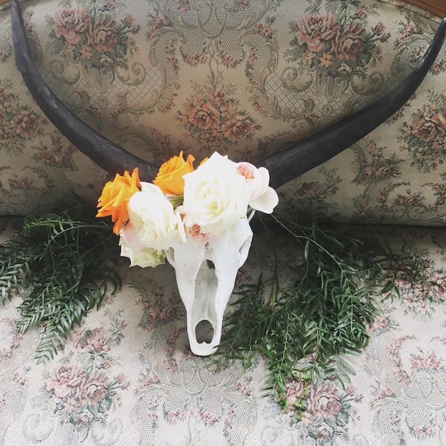 cow skull stylish decor party hire
